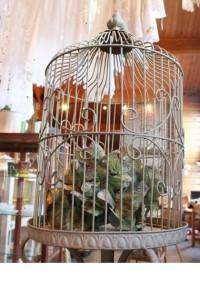 81鳥籠2