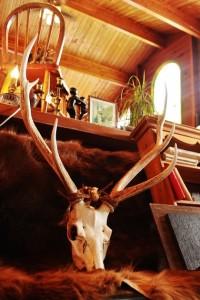 81鹿の頭と角 オブジェ 鹿