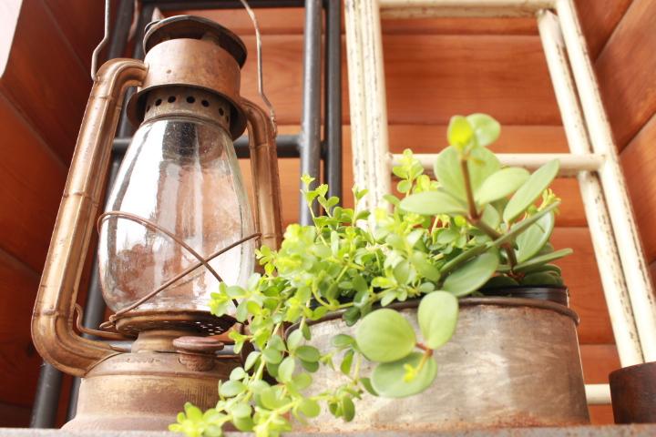 81 ガーデニング フェア ブリキ アイアン 古道具 木箱 アンティーク ランプ パン箱