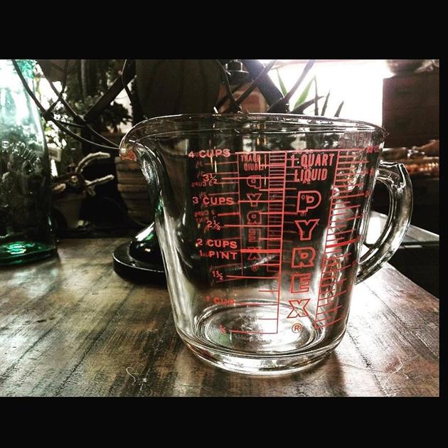 81Pyrexメジャーカップ